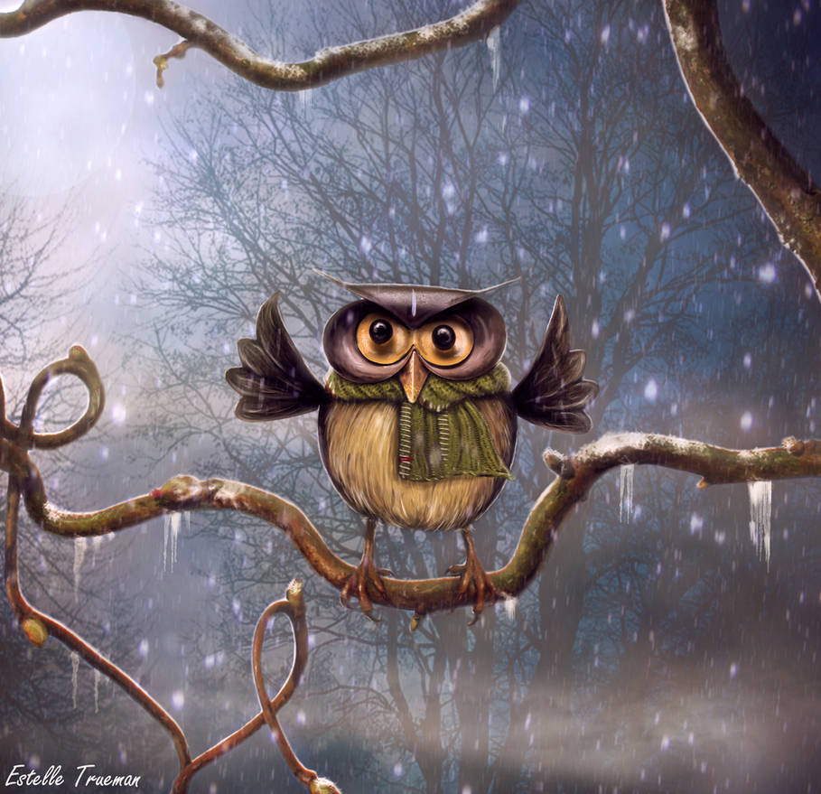 The Wise Owl by needcaffine