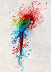 Rainbow parrot 2011