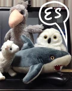 ES-SHARK's Profile Picture