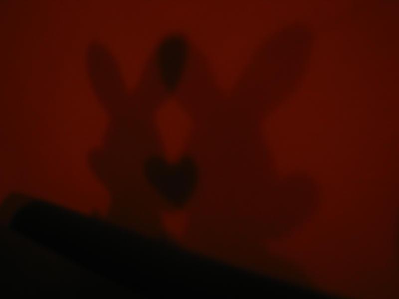 shadow of love by klaudelu