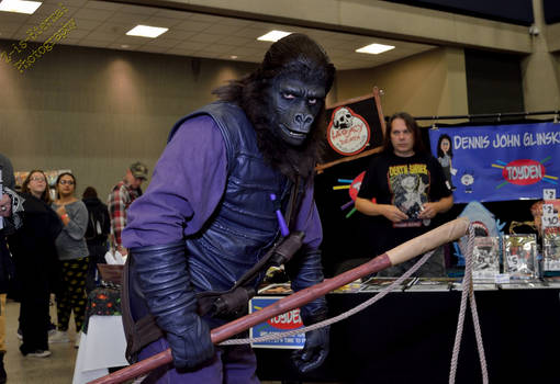 Buffalo Comicon - 0505