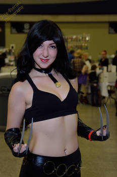 Buffalo Comicon 2015 - 0398