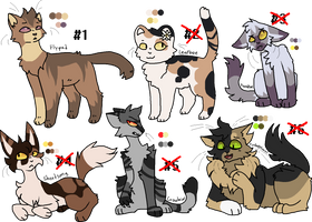 Generated adopts once more (1/6 OPEN)