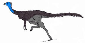Struthiomimus altus by TheMorlock
