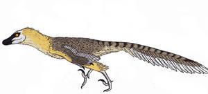 Velociraptor mongoliensis by TheMorlock