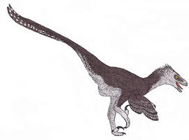 Saurornitholestes langstoni by TheMorlock