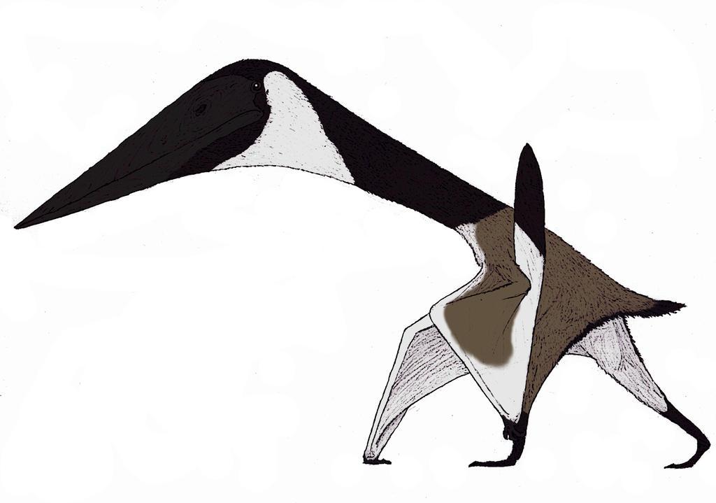Zhejiangopterus linhaiensis by TheMorlock