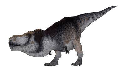 I drew T. rex again