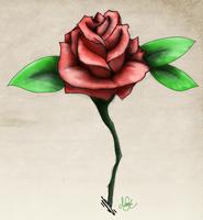 Tattoo style rose by mezwik