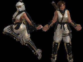 DOA5 LR Lisa Ninja costume