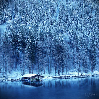 Cold. by marc-bruno