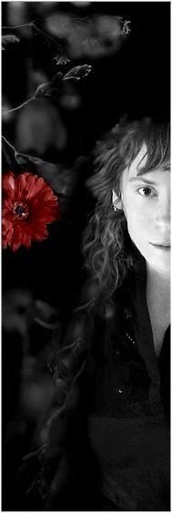 libelle's Profile Picture