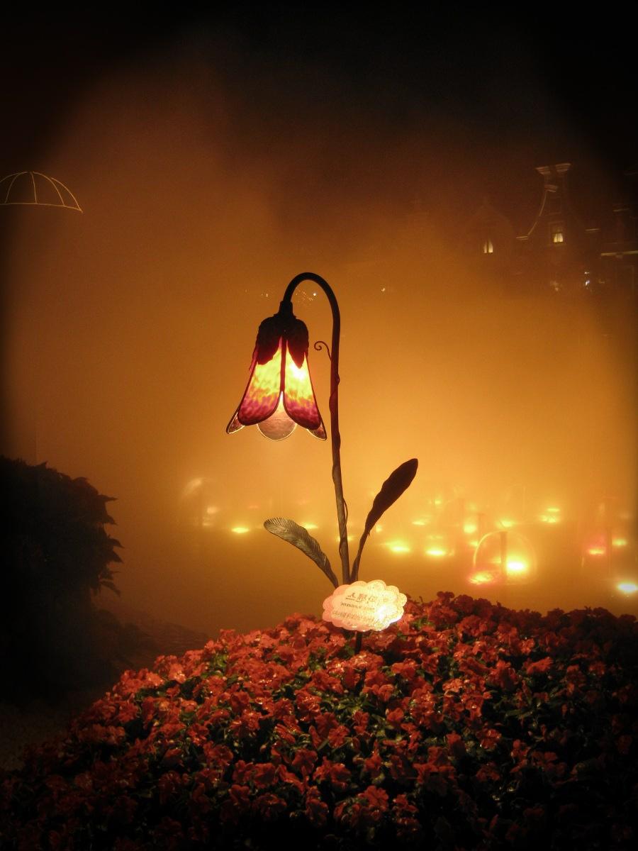 magical flower by *beyzayildirim77 on deviantART | book ...