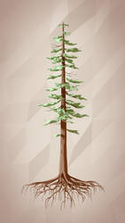 Redwood by smnbrnr