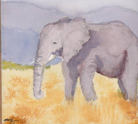 african elephant by megling-duck