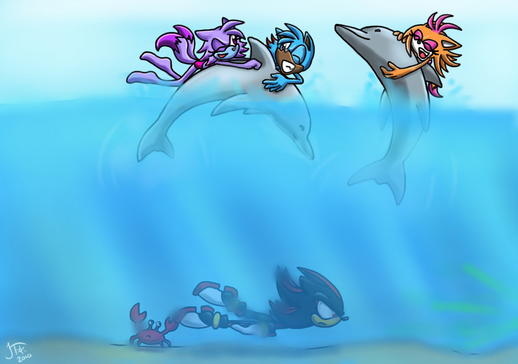 Dolphin Swimming Sketch Swimming Dolphins by Sonicff