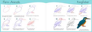 How to Draw Series - Kingfisher