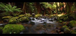 Stream Of Tasmania