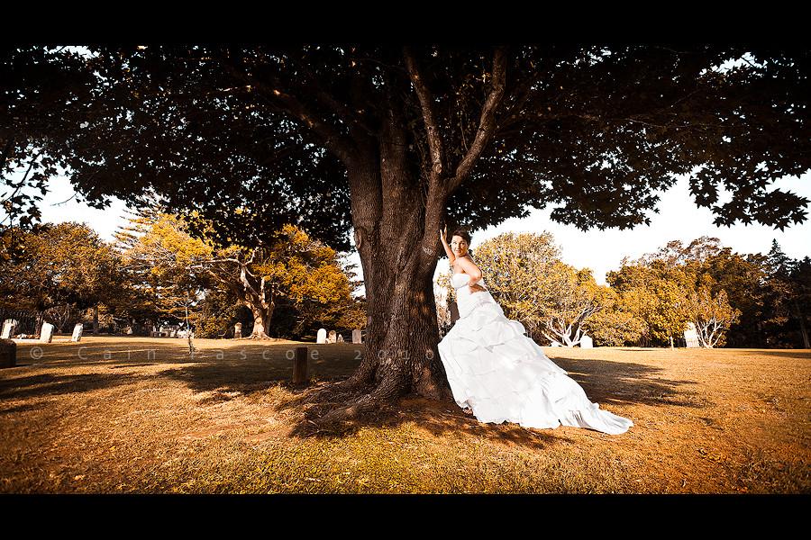 Tree Bride by CainPascoe