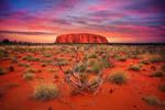 Outback Hues