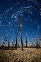 Dry Stars by CainPascoe
