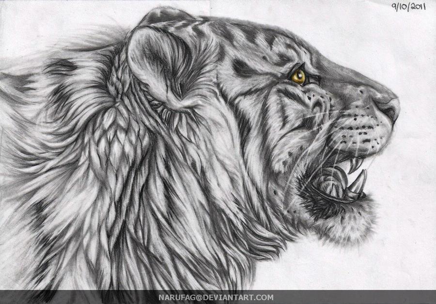 White Tiger by narufag on DeviantArt
