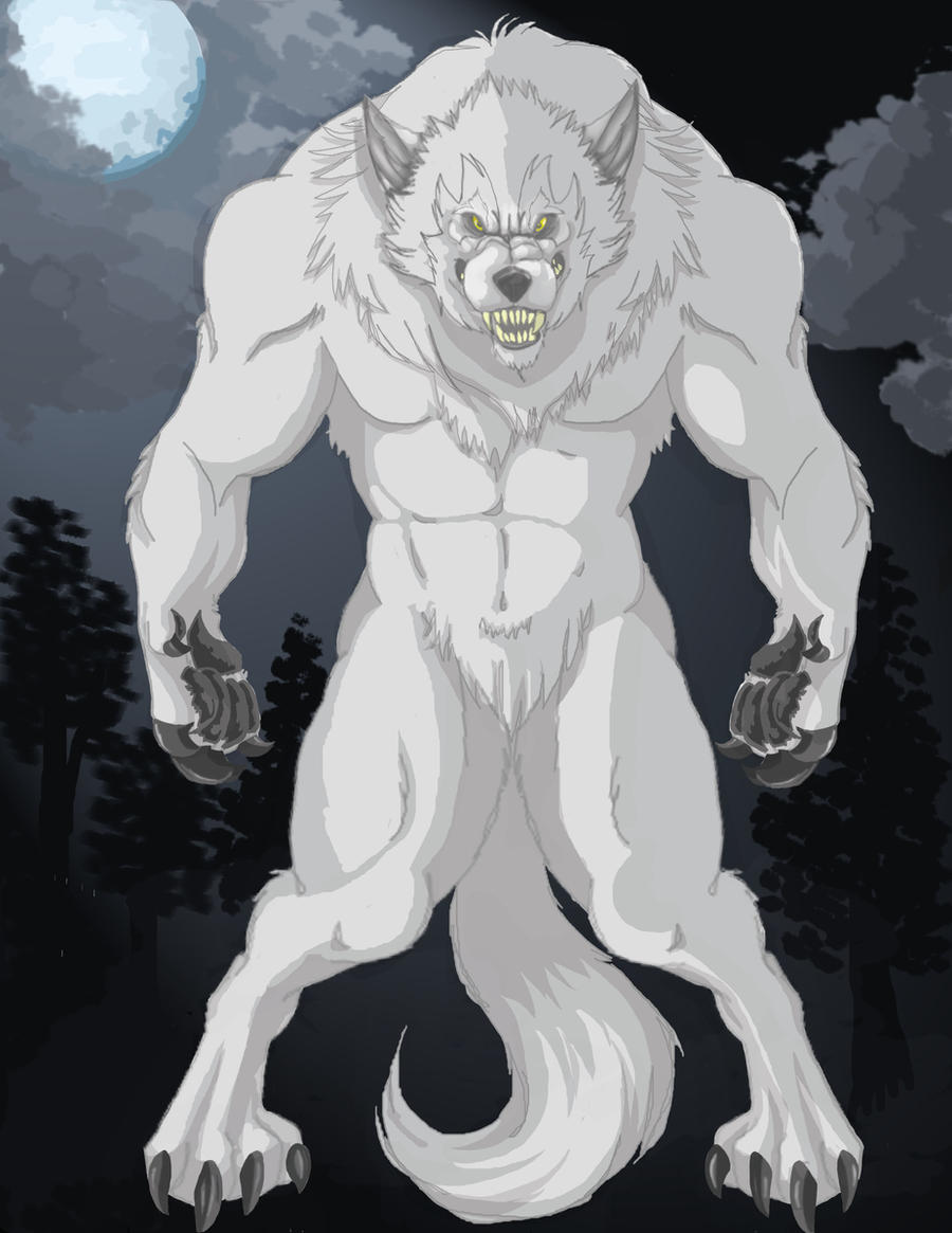 Anime White Werewolf White Werewolf by