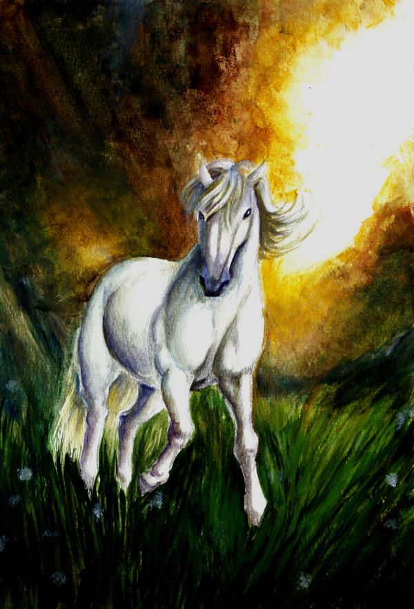 Through enchanted lands by renata-studio