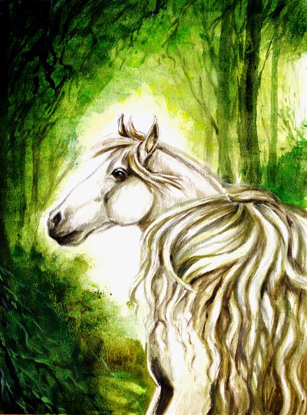 Arab horse by renata-studio