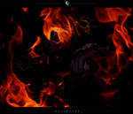 Blaze4 0288