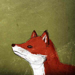 Taming Game - The Fox