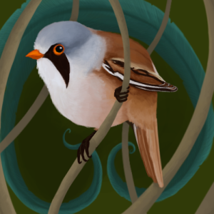 Feather-Dancer's Profile Picture