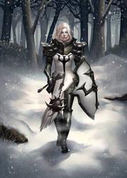 The Crusader by fleshtint