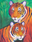 Two tigers watercolor