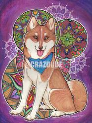 Henna Siberian Husky by Crazdude