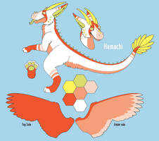 Hamachi Dutchie Design