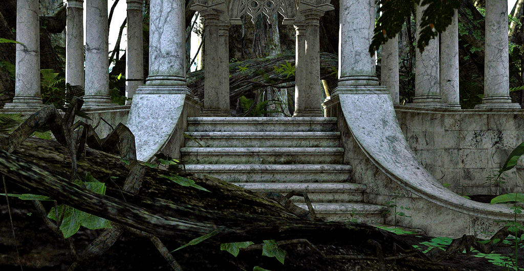Stairway by Platycerium