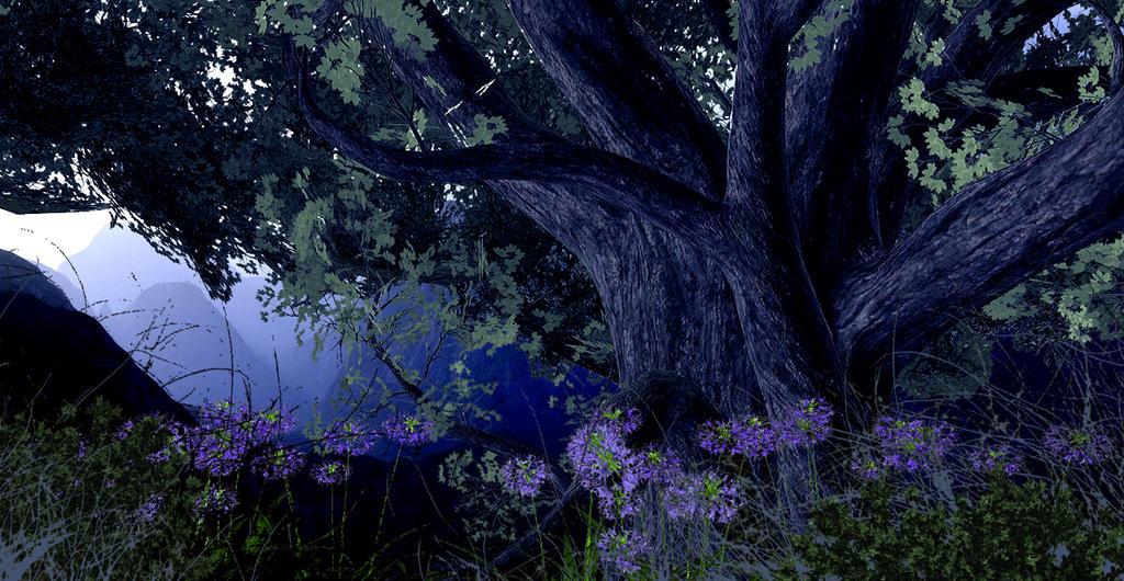 Landscape Three by Platycerium