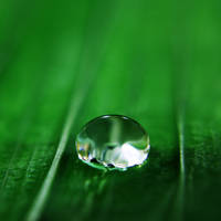 Droplet 12 by josgoh