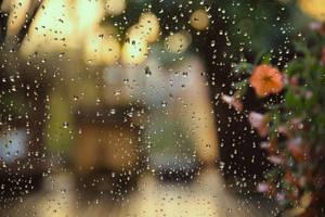a rainy day by alexkaessner