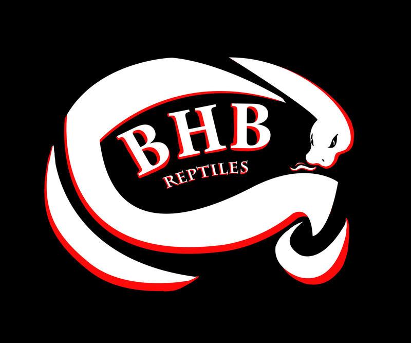 BHB Reptiles Logo By NadilynBeato On DeviantArt