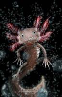 Axolotl by NadilynBeato