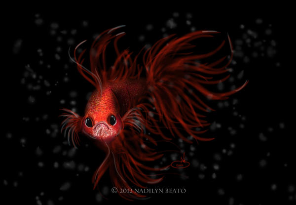 Siamese Fighting Fish (Betta Splendens) by NadilynBeato