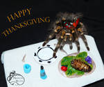 Happy Thanksgiving from Gaia by NadilynBeato