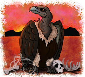Indian White-Backed Vulture by NadilynBeato