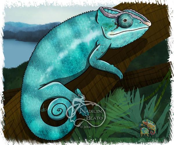 Nosybe chameleon by NadilynBeato