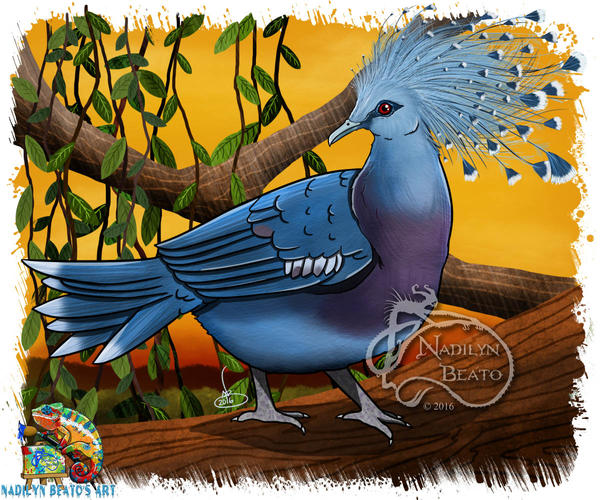 Victoria crowned pigeon by NadilynBeato