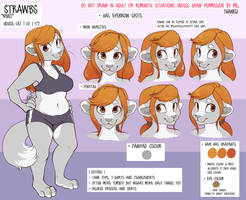 Strawbs Reference Sheet - 2013 by sbneko