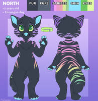 North Ref Sheet - Commission by sbneko