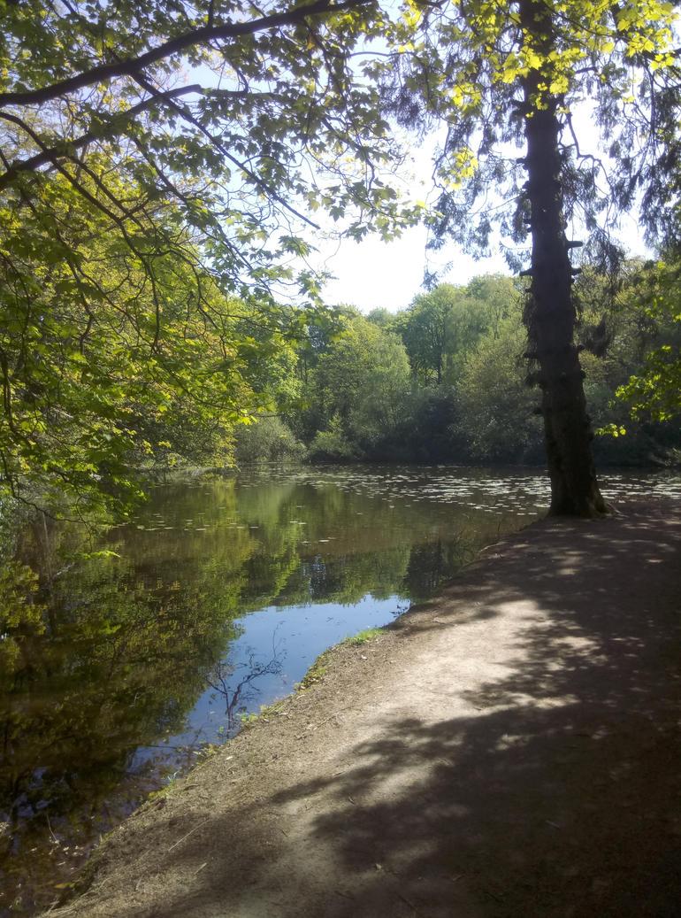 Walk to Forbidden Valley by SpicedCharlatte